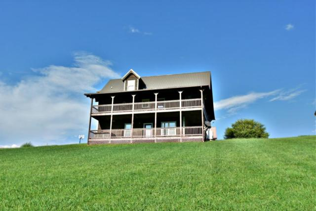 3441 Cove Meadows Drive, Sevierville, TN 37862 (#1013924) :: The Terrell Team