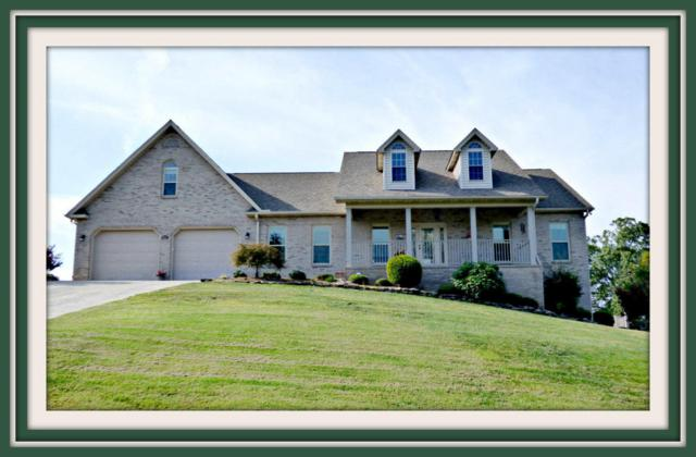 849 Pinnacle Drive, Dandridge, TN 37725 (#1015586) :: Billy Houston Group