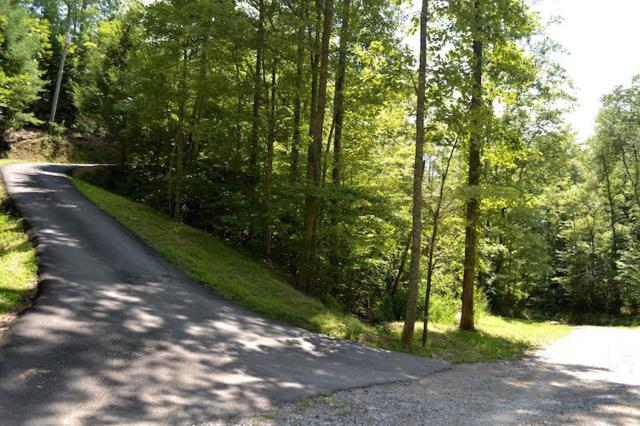 Kiliam Way, Sevierville, TN 37862 (#1015617) :: SMOKY's Real Estate LLC