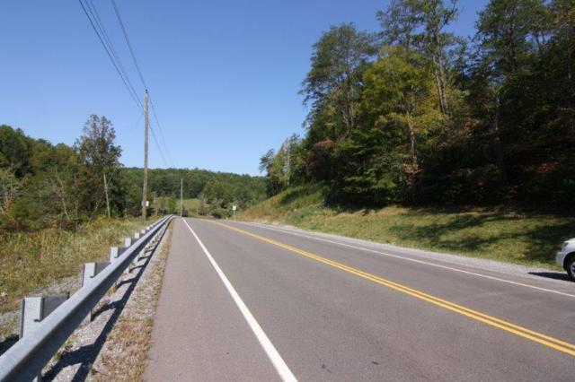 Birds Creek Road Rd, Gatlinburg, TN 37738 (#1016021) :: The Terrell Team