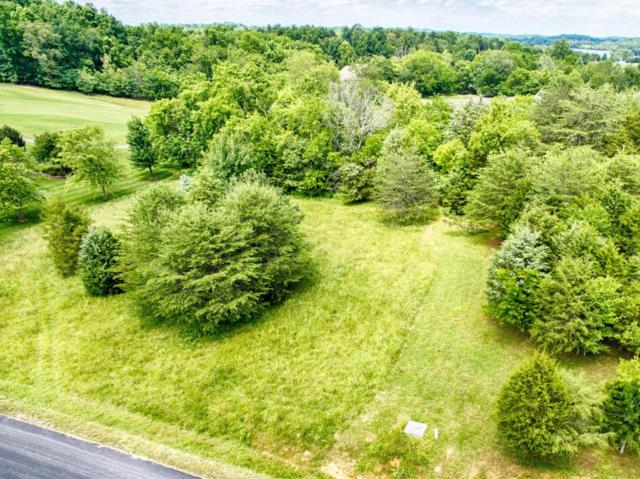 Sikwa Trl, Vonore, TN 37885 (#1016126) :: Billy Houston Group