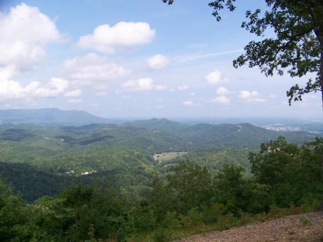Lot# 16 Laurel Top Way, Gatlinburg, TN 37738 (#1016215) :: Billy Houston Group