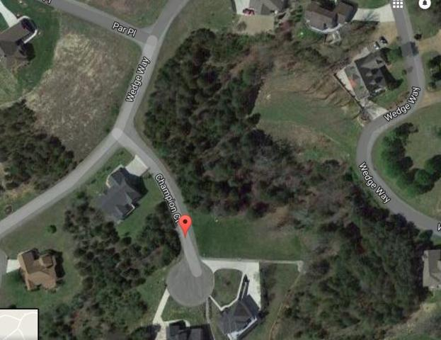 Lot 226 Champion Court, Tazewell, TN 37879 (#1016469) :: Tennessee Elite Realty