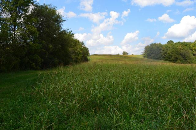 Clover Hill Rd, Maryville, TN 37801 (#1016847) :: Billy Houston Group