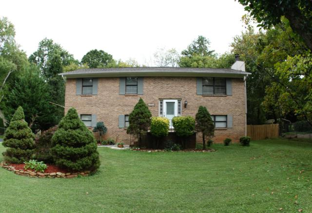 7736 Luscombe, Knoxville, TN 37919 (#1016913) :: Billy Houston Group