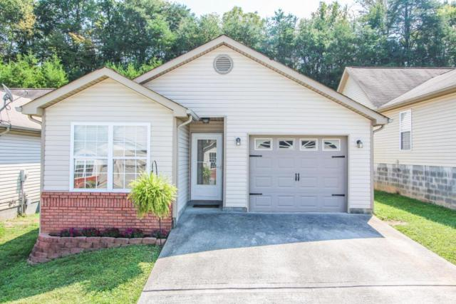 1512 Sails Way, Knoxville, TN 37932 (#1016981) :: Billy Houston Group