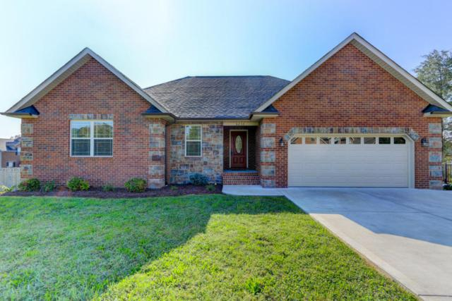 6250 Mountain Rise Drive, Knoxville, TN 37938 (#1017346) :: Billy Houston Group