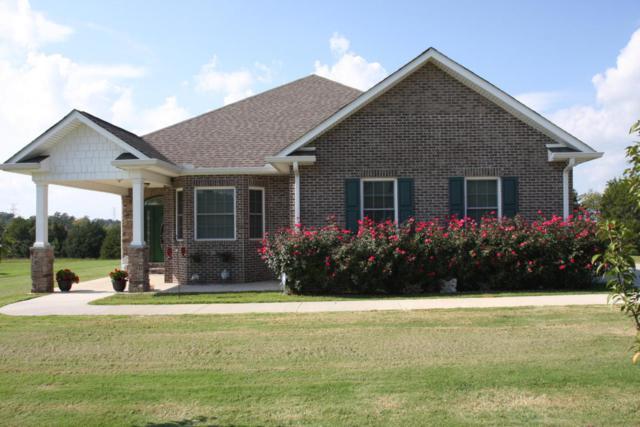 155 Williamsburg Drive, Lenoir City, TN 37772 (#1017357) :: Billy Houston Group