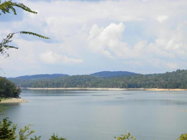 Lot 599 Russell Brothers Road Rd, Sharps Chapel, TN 37866 (#1017428) :: Billy Houston Group
