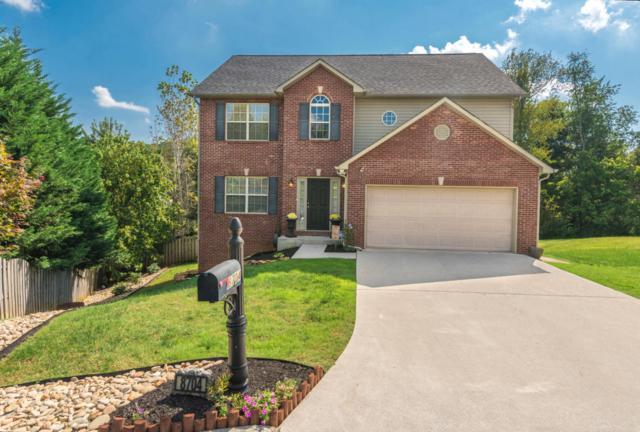 8704 Basil Lane, Knoxville, TN 37923 (#1017463) :: Billy Houston Group