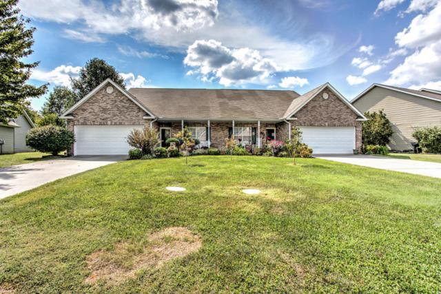 1676 Emerald Pointe Lane, Knoxville, TN 37918 (#1017549) :: Billy Houston Group