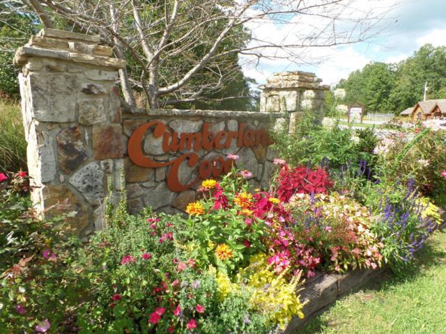 8.2 Ac Goodson Tr, Monterey, TN 38574 (#1017576) :: Billy Houston Group