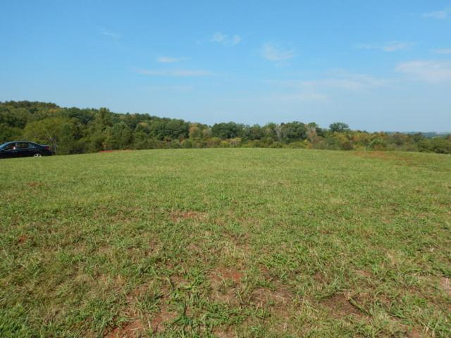 2051 Hiwassee Rd, Sweetwater, TN 37874 (#1017584) :: Billy Houston Group