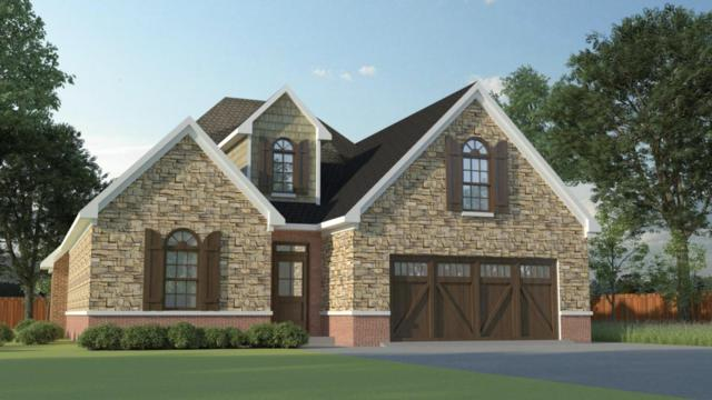 2519 Mishas Meadow Way, Knoxville, TN 37932 (#1017607) :: Billy Houston Group