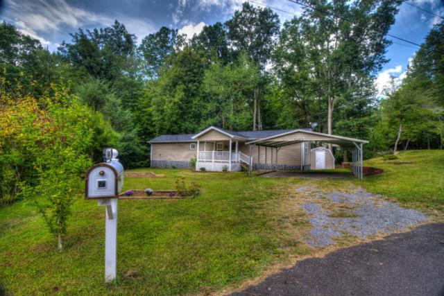 1403 Lin Creek Rd, Sevierville, TN 37876 (#1017879) :: The Terrell Team