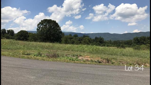 Easy Going Way Lot 34, Cosby, TN 37722 (#1017902) :: Shannon Foster Boline Group
