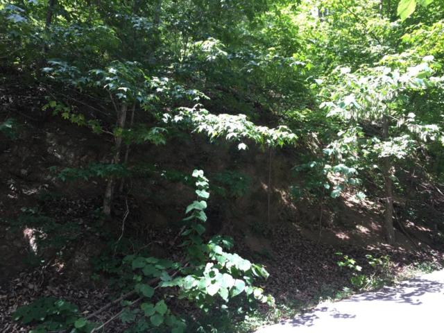 Lot #5 Rising Fawn Way, Sevierville, TN 37862 (#1018014) :: Billy Houston Group