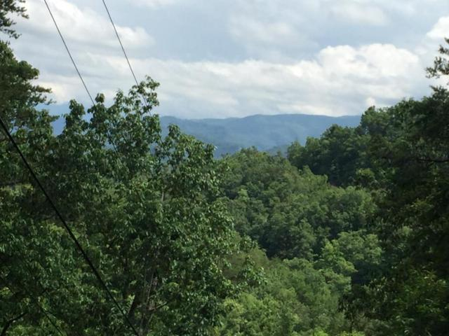 Lot #1 Rising Fawn Way, Sevierville, TN 37862 (#1018015) :: Billy Houston Group
