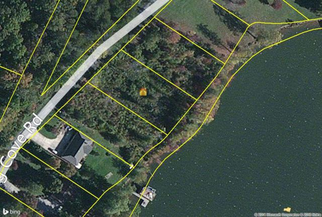 Lot 10 Toestring Cove Rd, Spring City, TN 37381 (#1018042) :: Billy Houston Group