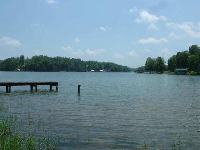 Lot 76 Toestring Cove Rd, Spring City, TN 37381 (#1018044) :: Billy Houston Group