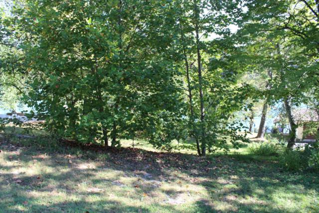 1049 Scenic Lakeview Drive, Spring City, TN 37381 (#1018591) :: Billy Houston Group
