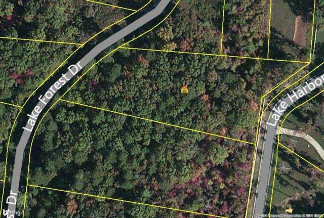 Lot 71 Lake Forest Drive, Spring City, TN 37381 (#1018609) :: Billy Houston Group