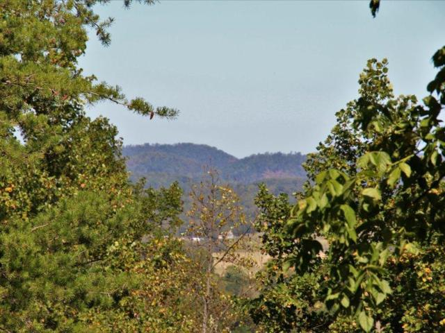 1 Townview Dr., Tellico Plains, TN 37385 (#1018711) :: Billy Houston Group