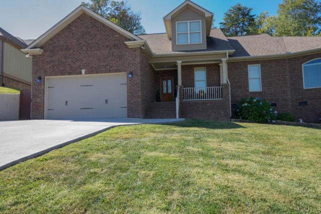 7449 Openview Lane, Corryton, TN 37721 (#1018940) :: Shannon Foster Boline Group