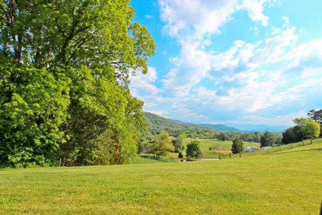 1.43 Acres Tranquility Ridge Drive, Newport, TN 37821 (#1018965) :: Shannon Foster Boline Group