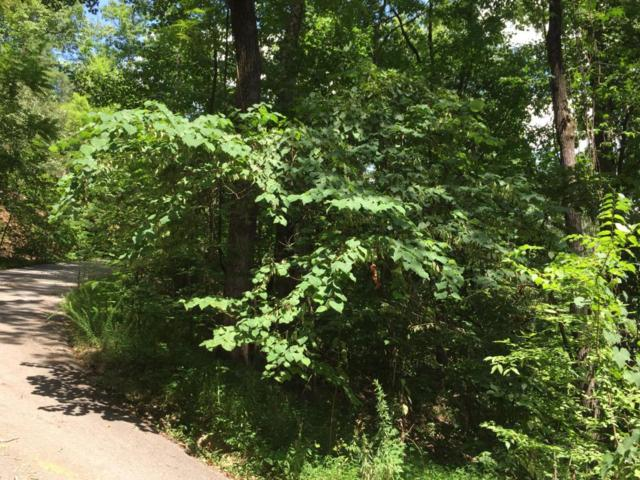 Lot #4-A Rising Fawn Way, Sevierville, TN 37862 (#1019053) :: Billy Houston Group