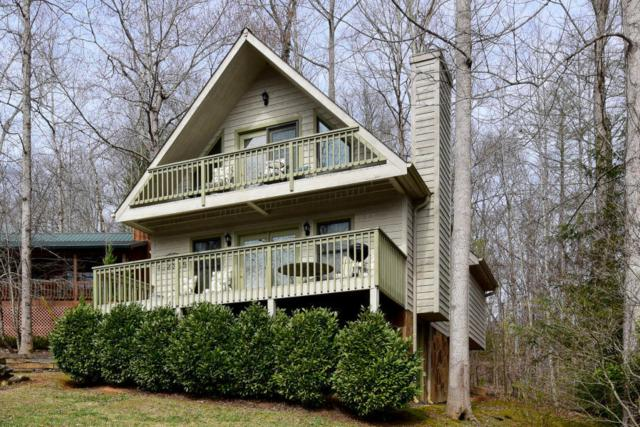 305 Settlers View Rd, Townsend, TN 37882 (#1019308) :: SMOKY's Real Estate LLC