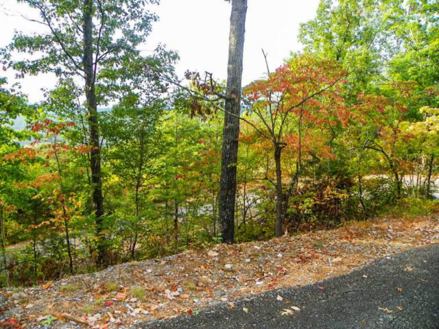 Lot#31 Twin City Way, Pigeon Forge, TN 37863 (#1019408) :: The Terrell Team