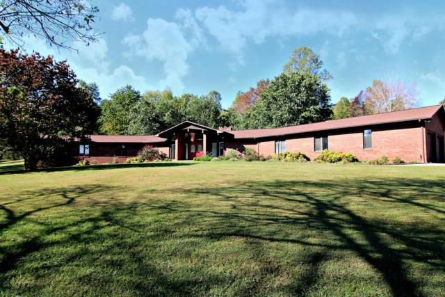 7907 Blacksferry Rd, Knoxville, TN 37931 (#1019642) :: Shannon Foster Boline Group