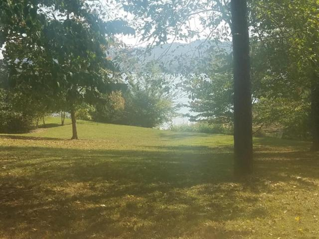 Lot 48 Setico Court, Mooresburg, TN 37811 (#1019650) :: Shannon Foster Boline Group