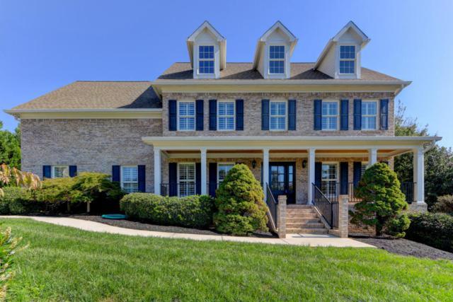 12126 Mallard Bay Drive, Knoxville, TN 37922 (#1019670) :: Shannon Foster Boline Group