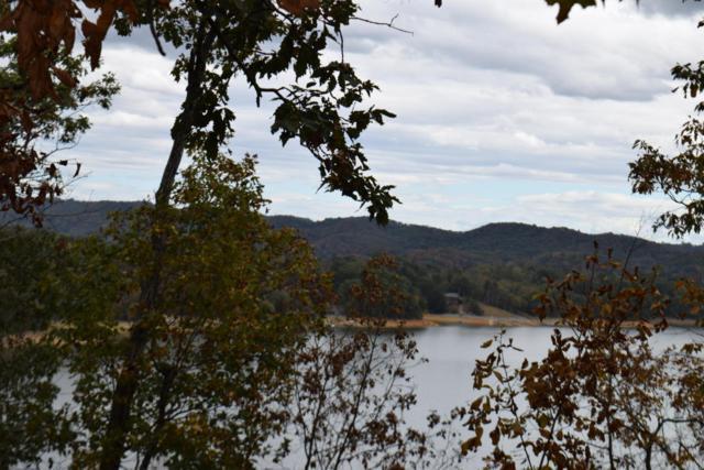 807 Wilderness Drive, Mooresburg, TN 37811 (#1019715) :: Billy Houston Group