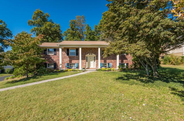 905 Tanforan Rd, Knoxville, TN 37923 (#1019865) :: Shannon Foster Boline Group