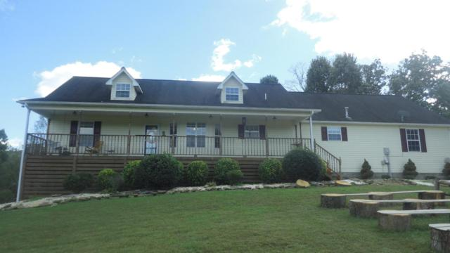 435 Davis Chapel Rd E Of Rd, LaFollette, TN 37766 (#1019873) :: Shannon Foster Boline Group