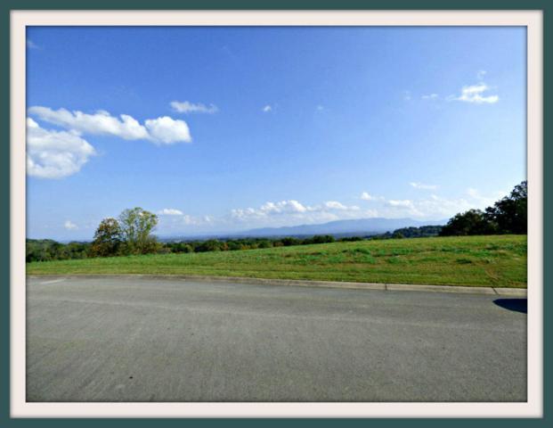 Lot 9 Hilltop View Drive, Dandridge, TN 37725 (#1019896) :: SMOKY's Real Estate LLC