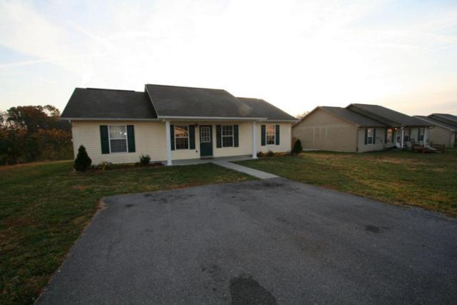 222 Gray Slate Circle, Sevierville, TN 37876 (#1019904) :: The Terrell Team