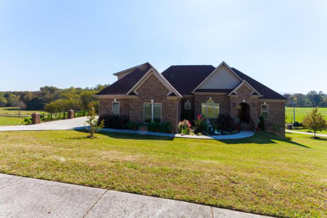 1218 Rippling Waters Circle, Sevierville, TN 37876 (#1019955) :: SMOKY's Real Estate LLC