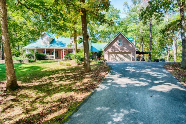 157 Rabbit Run Way, Dandridge, TN 37725 (#1019971) :: SMOKY's Real Estate LLC