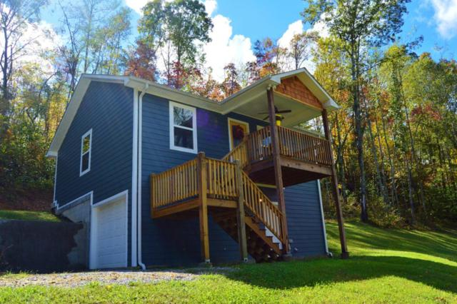 142 Wilderness Drive, New Tazewell, TN 37825 (#1019993) :: SMOKY's Real Estate LLC