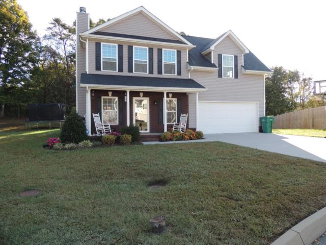 8538 Bowsong Lane, Powell, TN 37849 (#1020059) :: Billy Houston Group