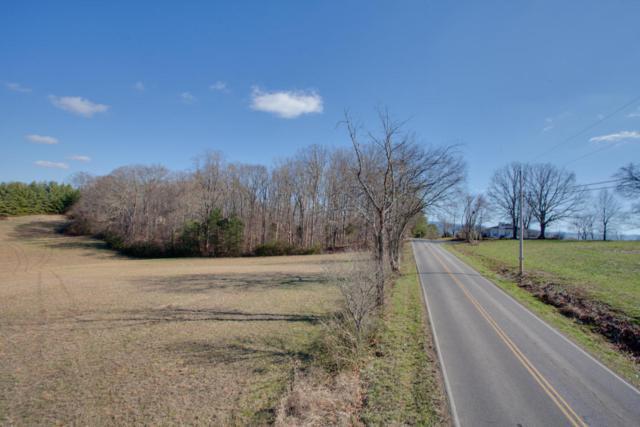 Raulston Rd, Maryville, TN 37803 (#1020167) :: Billy Houston Group