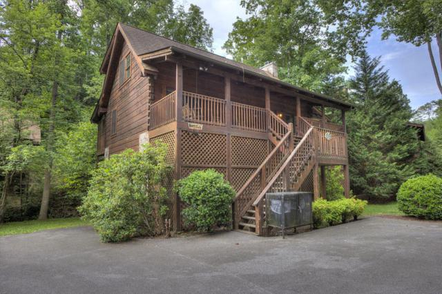 617 Eagles Boulevard Way, Pigeon Forge, TN 37863 (#1020251) :: Billy Houston Group