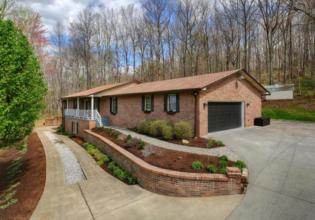 2128 Berrywood Drive, Knoxville, TN 37932 (#1020266) :: Billy Houston Group