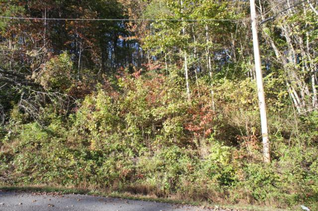 Lot 20 Bakers Circle, Maynardville, TN 37807 (#1020424) :: Tennessee Elite Realty
