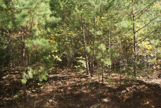 Lot#133 Wild Heron Way, Sevierville, TN 37862 (#1021004) :: Billy Houston Group