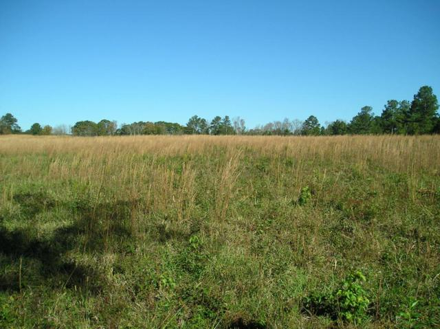 Lot 59 County Road 195, Athens, TN 37303 (#1021052) :: Billy Houston Group